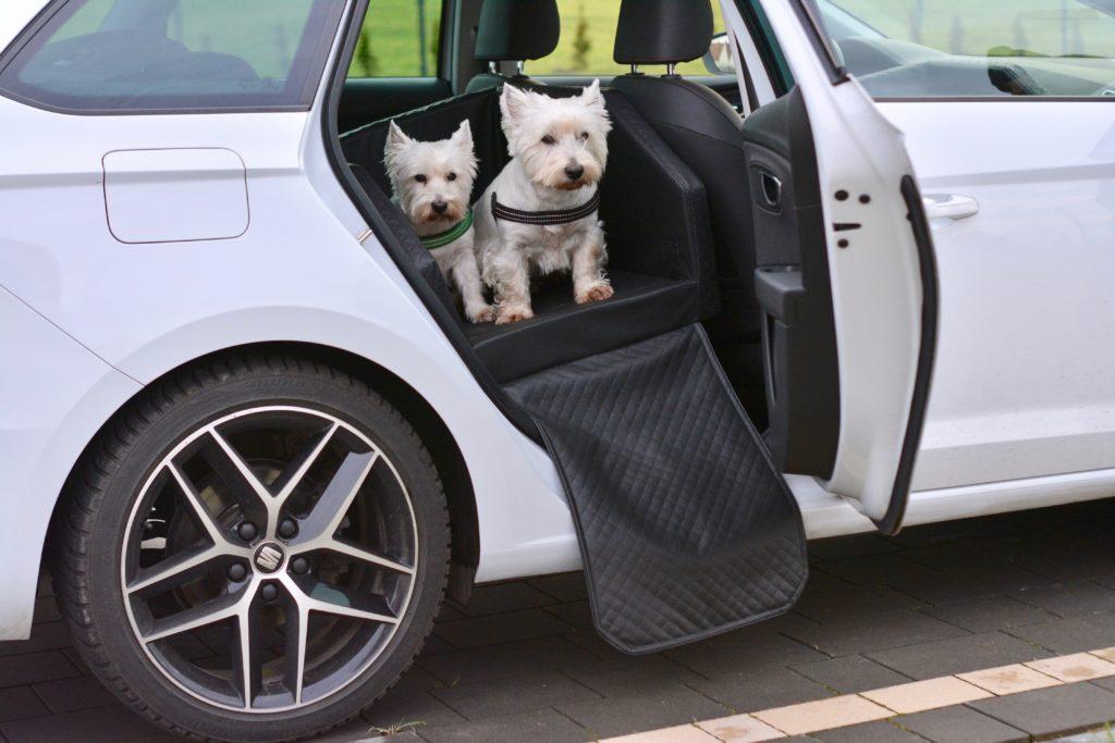 Rücksitz-Autobett